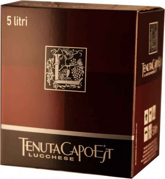 Tenuta CapoEst Lucchese Merlot Rotwein IGT Weinschlauch 5 Liter